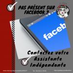 page-facebook-professionnelle